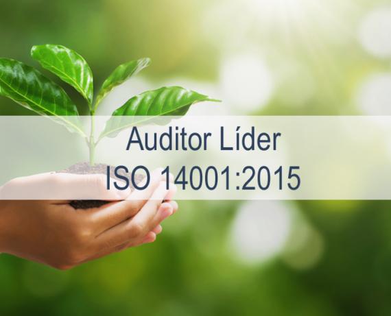 Formación de auditores líderes de Sistemas de Gestión Ambiental ISO 14001:2015